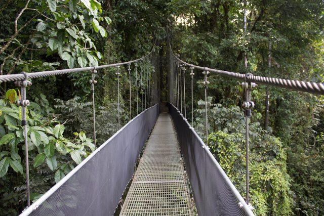Quelques activités fascinantes à faire pendant un voyage à Costa Rica
